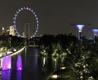 Сингапур. Поздний вечер. Городское колесо обозрения