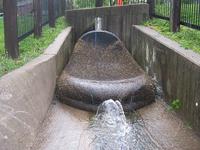 Австралийский город нашел гениальный способ борьбы с загрязнением водных ресурсов