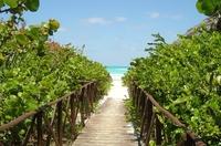 Варадеро: по дороге на пляж...