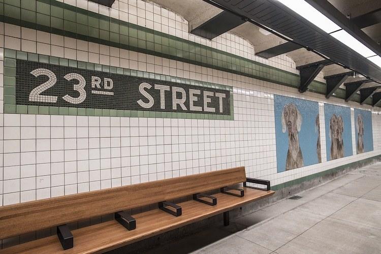 Метро Нью-Йорка украсили крутыми портретами собак, одетых как люди
