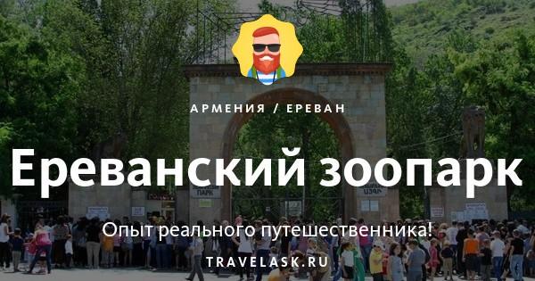 Зоопарк в Ереване - часы работы, животные и цены Ереванского зоопарка