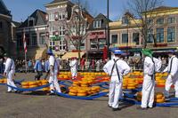 Что посмотреть в Амстердаме и его окрестностях