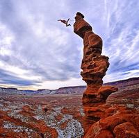 25 Безумно крутых снимков с Instagram'a National Geographic