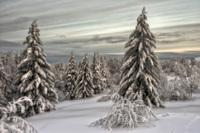 20 фотографий сказочной русской зимы