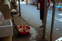 24 неожиданных и ошеломительных снимка с китайских улиц