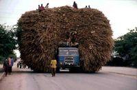 15 транспортных средств, которые, кажется, вот-вот развалятся под своим грузом
