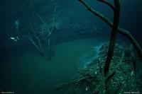 Дайвер обнаружил реку... под водой. В такое явление сложно поверить!