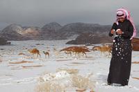 Сахара, Саудовская Аравия, Египет: откуда появляется аномальный снег в пустынях