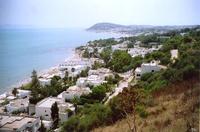 тунис джерба август медузы