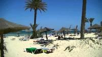 тунис монастир в августе медузы отзывы