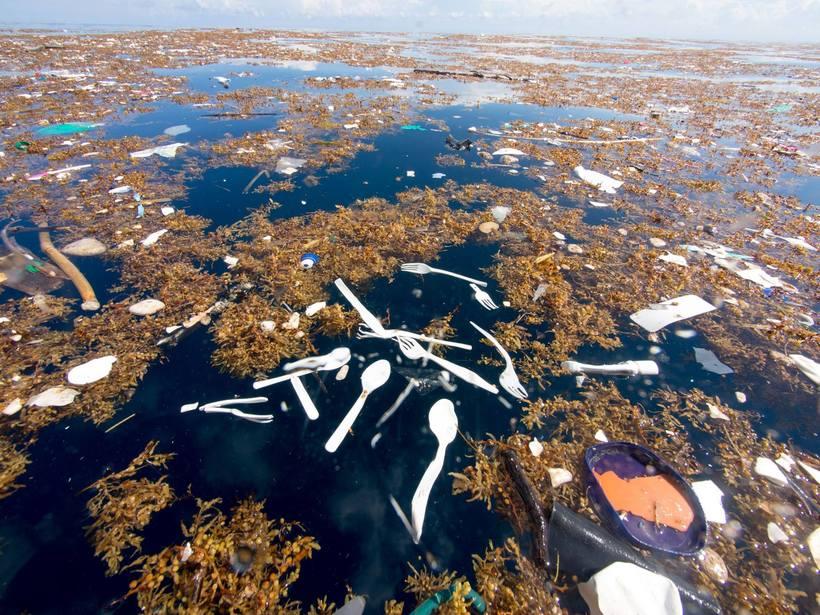 мусорный остров в тихом океане фото