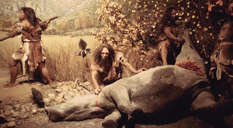 Картинки по запросу пища древнего человека