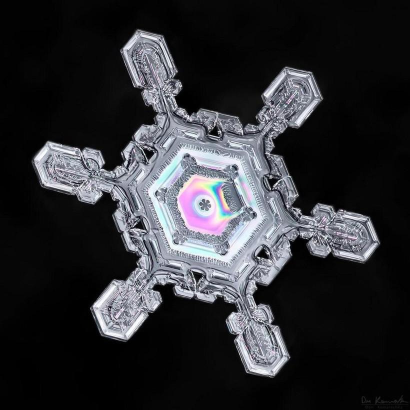 Как выглядят снежинки под микроскопом: 14 умопомрачительных макрофотографий