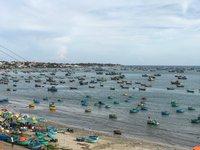 Рыбаки вернулись с богатым уловом, Муйне