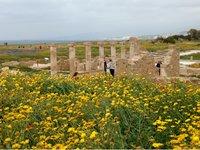 В археологическом парке Като Пафос