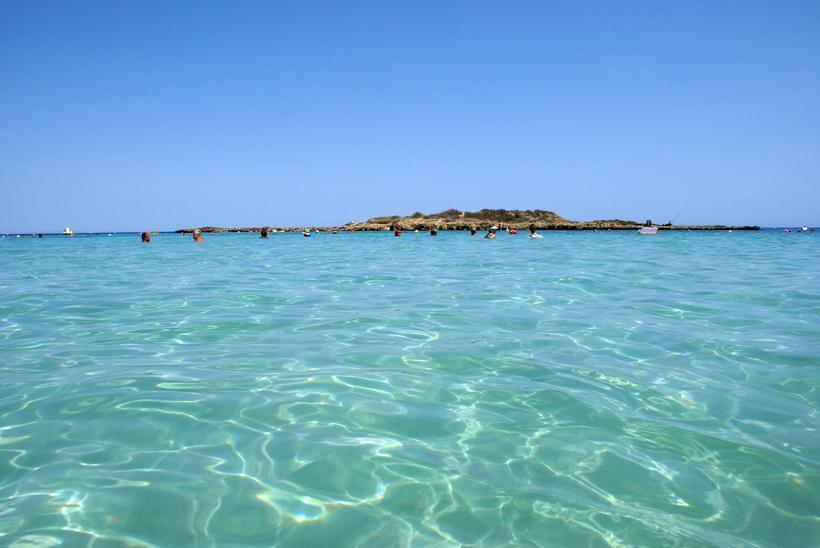 пляж фигового дерева фото таком