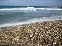 Почти все пляжи в Гаграх усыпаны галькой