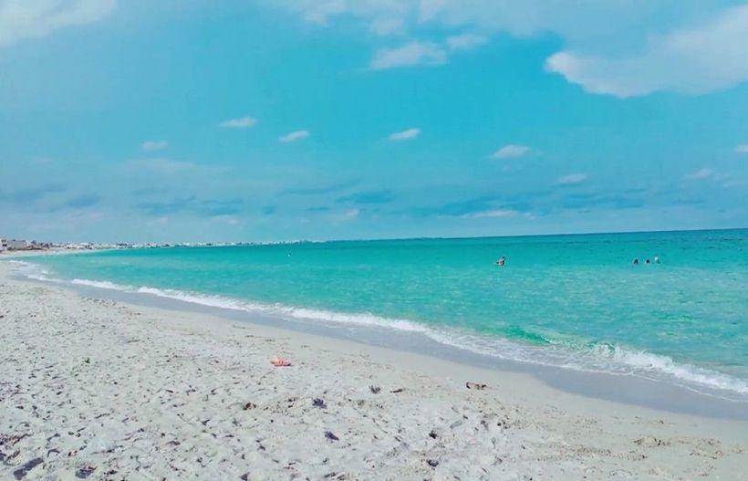 список организаций фото пляжа махдия тунис поездки город или