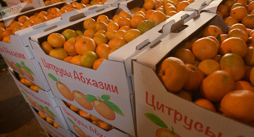 Продажа цитрусовых в Абхазии в ноябре