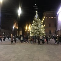 Елка на площади Маджоре