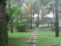 Такие тропические дожди бывают в Дананге в сентябре