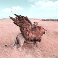 Художник показал, как ведут себя животные, когда никто не видит