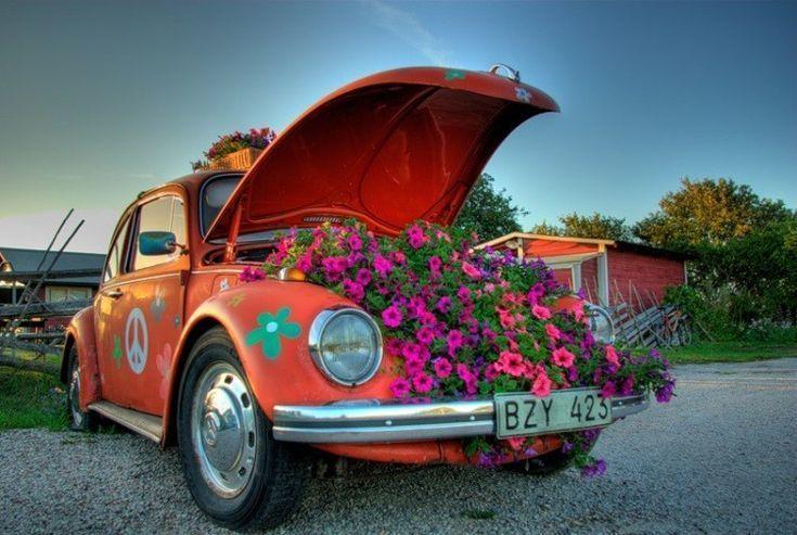 машина с цветами картинки красивые актриса долго