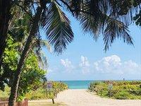 Дорога к пляжу North Shore Open Space Park в Майами