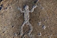 «Библия каменного века»: петроглифы Карелии