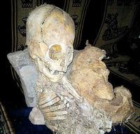 большой инопланетный скелет