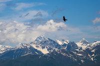 Орел и горы