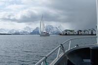 Сезон яхтинга в Норвегии