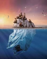 Сказочные портреты животных, заставляющие задуматься о том, что мы делаем с планетой