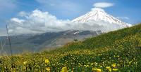 Гора Демавенд