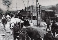 Выселение украинцев