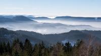 Холмы Вогез под пеленой тумана