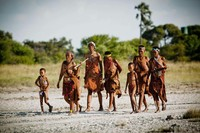 Бушмены Африки