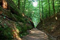 Рельеф гор Тюрингенский Лес