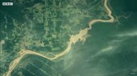Видео: Как процесс масштабной вырубки лесов выглядит из космоса