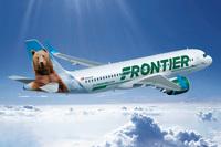 Американская авиакомпания раздает бесплатные билеты всем «зеленым»