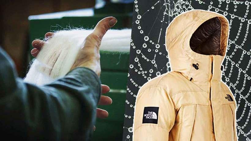 Видео: Биоинженеры создали куртку из паутины, которая выйдет в продажу в этом году