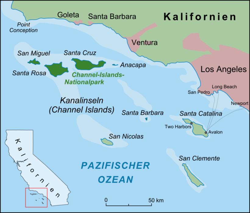 Как выжить одной на острове: трагическая история женщины с острова Сан-Николас
