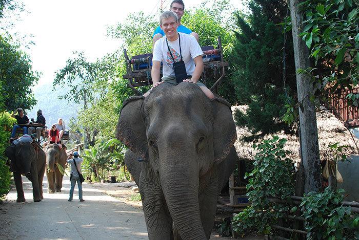 На территории комплекса Ангкор-Ват наконец-то запретят кататься на слонах