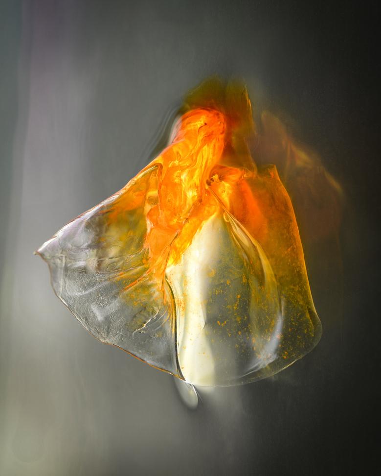 Биохимик создает потрясающие жидкие биоморфные структуры