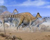 Можно ли воскресить динозавров: ученые объявили о находке сохранившихся фрагментов ДНК