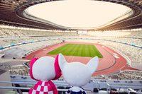 Из-за пандемии Олимпийские игры перенесли на следующий год