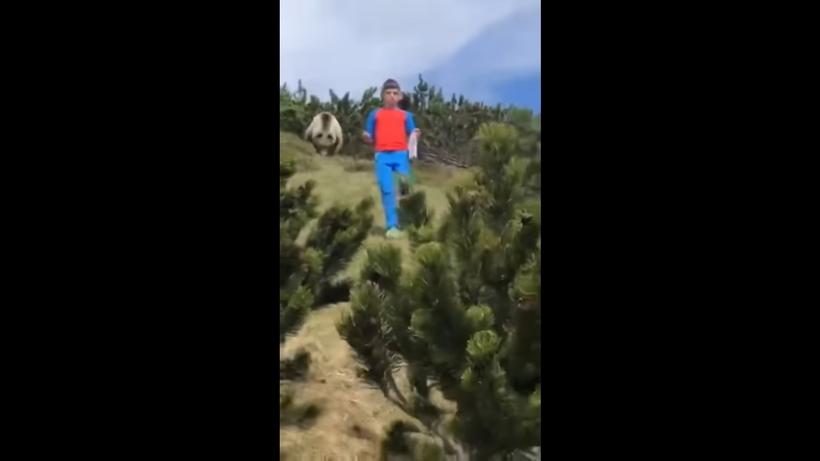 12-летний мальчик изо всех сил пытается не паниковать, зная, что за ним идет медведь