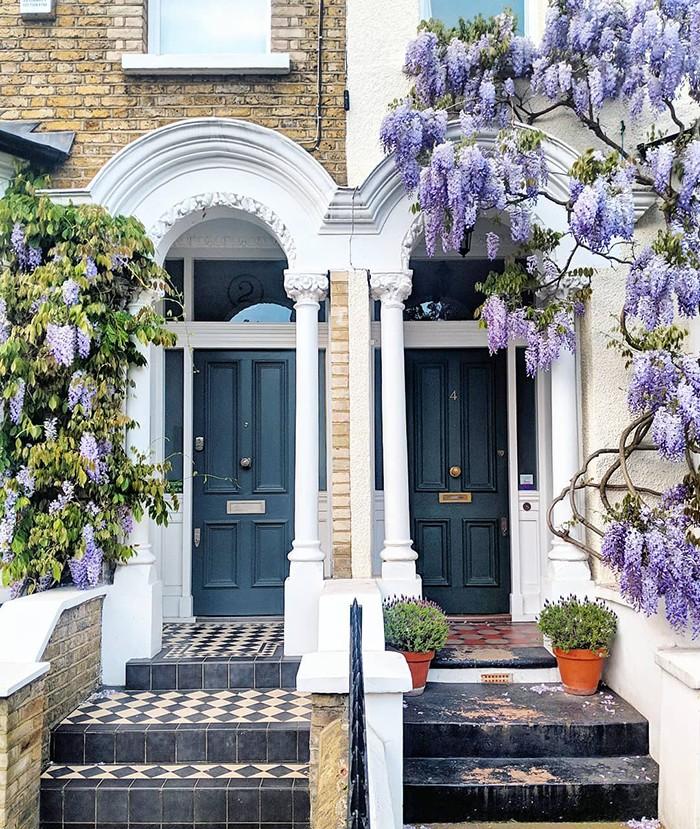 Женщина собрала десятки тысяч подписчиков, снимая самые живописные двери Лондона