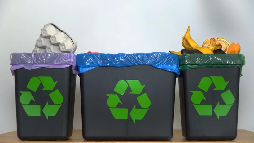 Видео: Семилетний мальчик превратил сортировку мусора в собственный бизнес