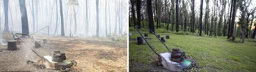 Между фото разница в один год
